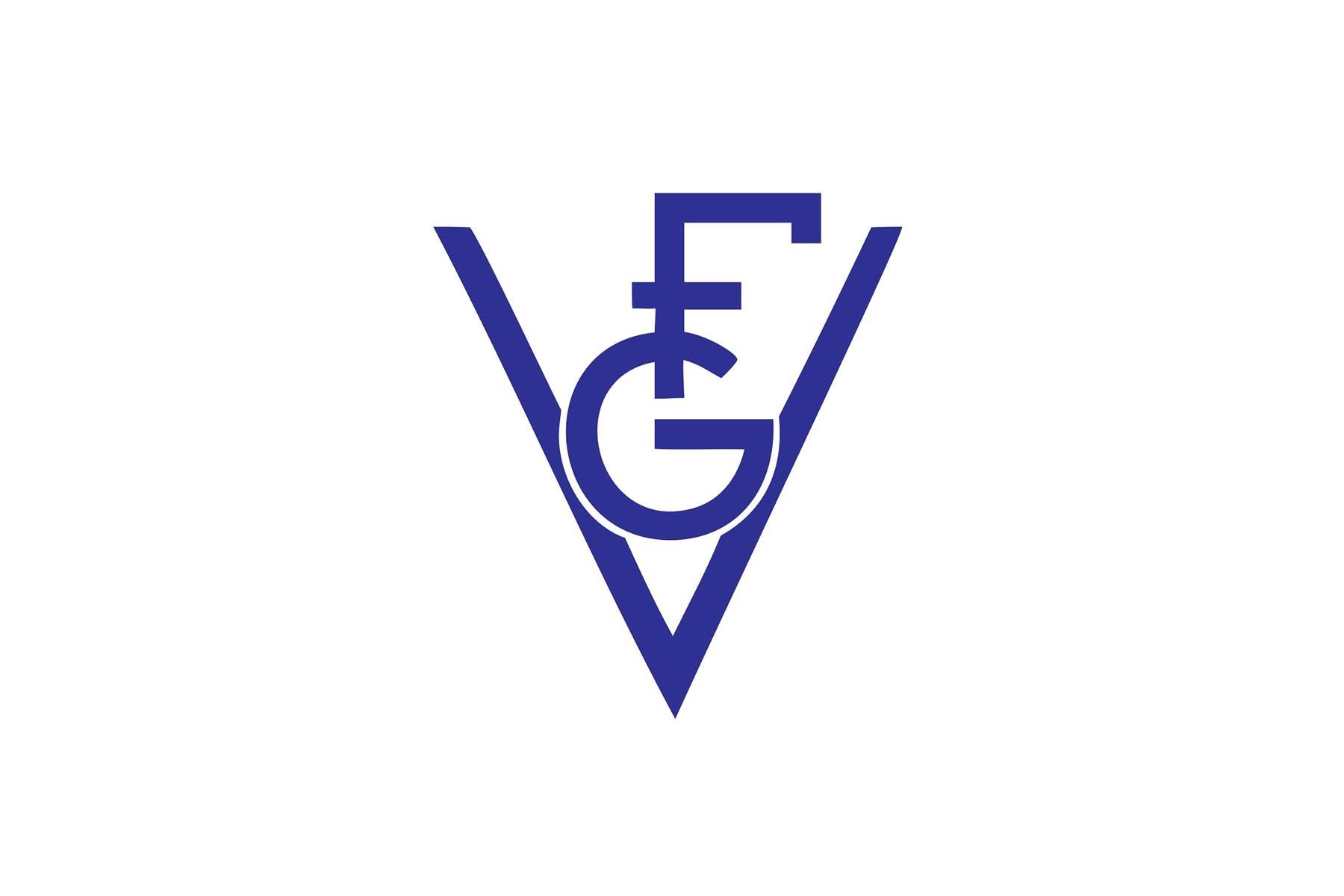 FG VALVOLE